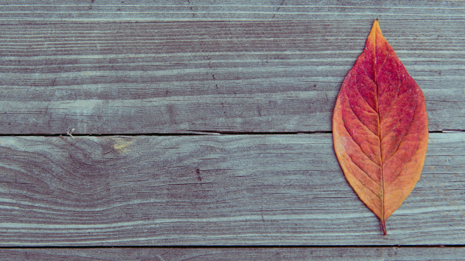 wooden-table-background